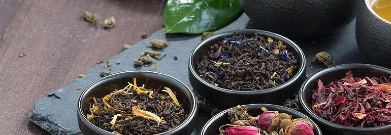 El Arte de la Planta del Té en varios colores